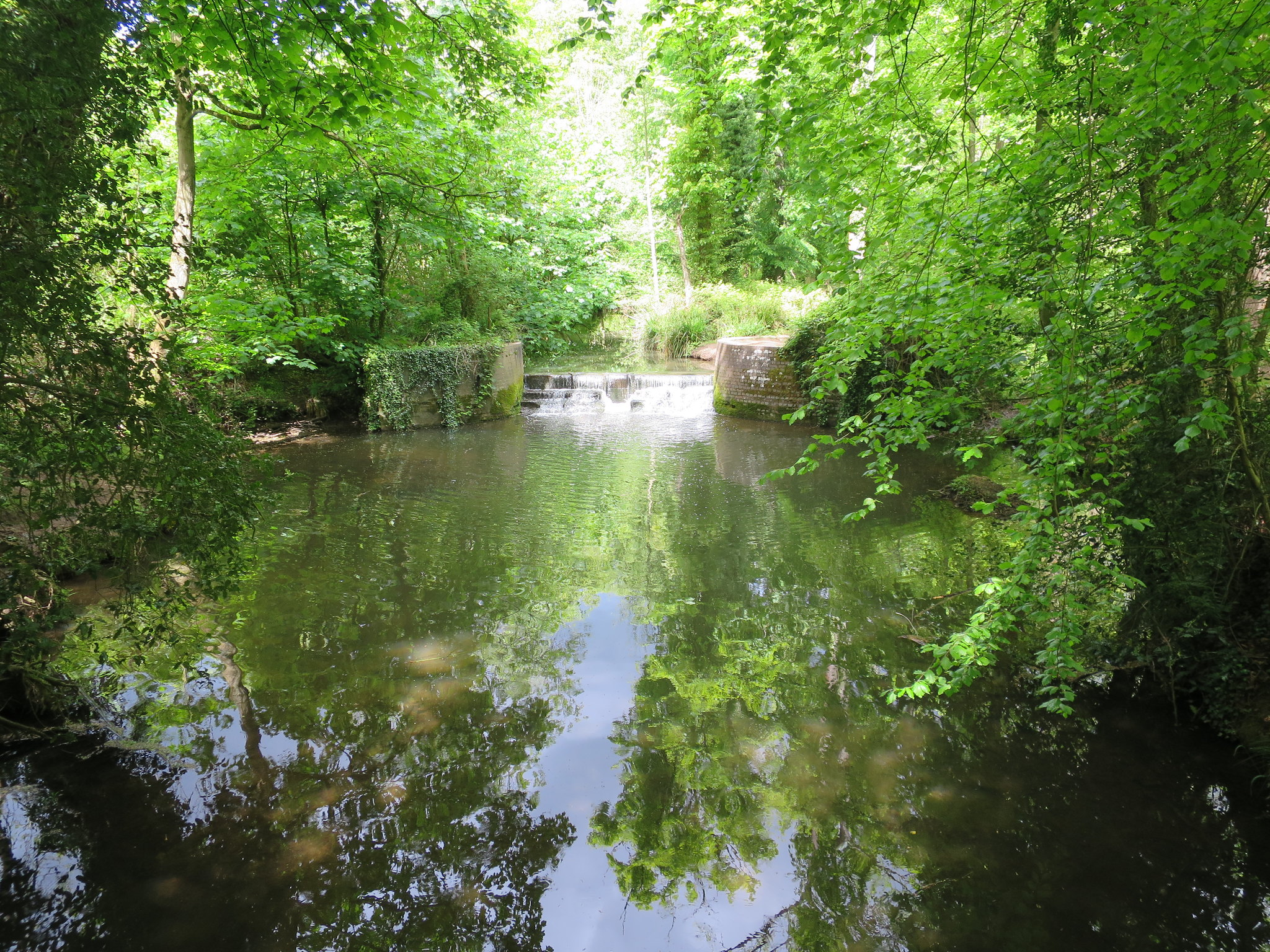 Coombe Country Park, Hello Im Clo, Culture Blogger 15