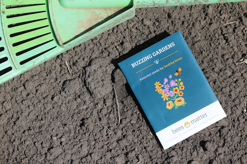 How to Plant a Pollinator-Friendly Garden
