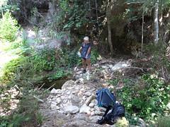 Vasque minuscule à la traversée du petit affluent du Ricu