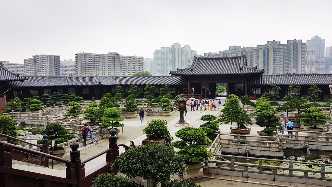 Chi Lin Nunnery and Nan Lian Garden Hong Kong 志蓮淨苑,南蓮園池, 香港