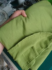 Remnant of Mushy Pea Green cotton sweatshirt fabric