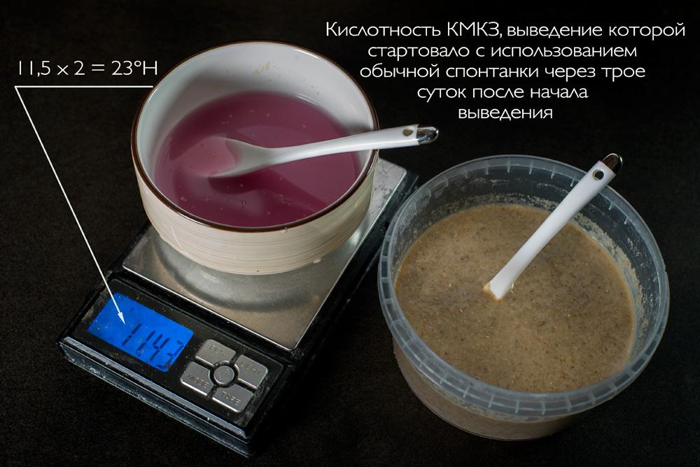 10_кислотность-другой-КМКЗ_DSC04307-2