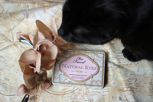 Too Faced, Natural Eyes eye shadow palette