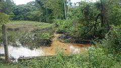Peligra consumo de agua en Barranca por atentados a oleoductos