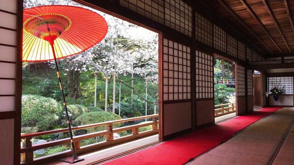 圓満院門跡:Enman-in Monzeki (20170413)