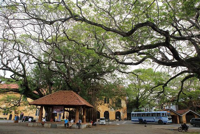 PW-Ceylon-Galle12