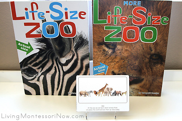 Zoo Culture Card with Life-Size Zoo Book and More Life-Size Zoo Book
