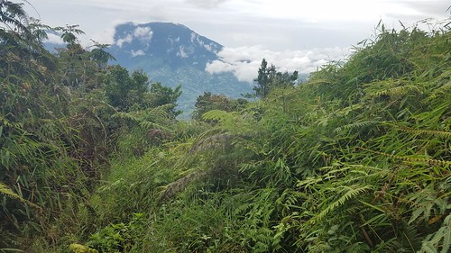 Hiking in West Sumatra