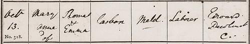Mary Anne Casbon BP Meld 1833 PR detail