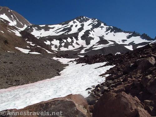 Mt. Shasta from Hidden Valley, Shasta-Trinity National Forest, California