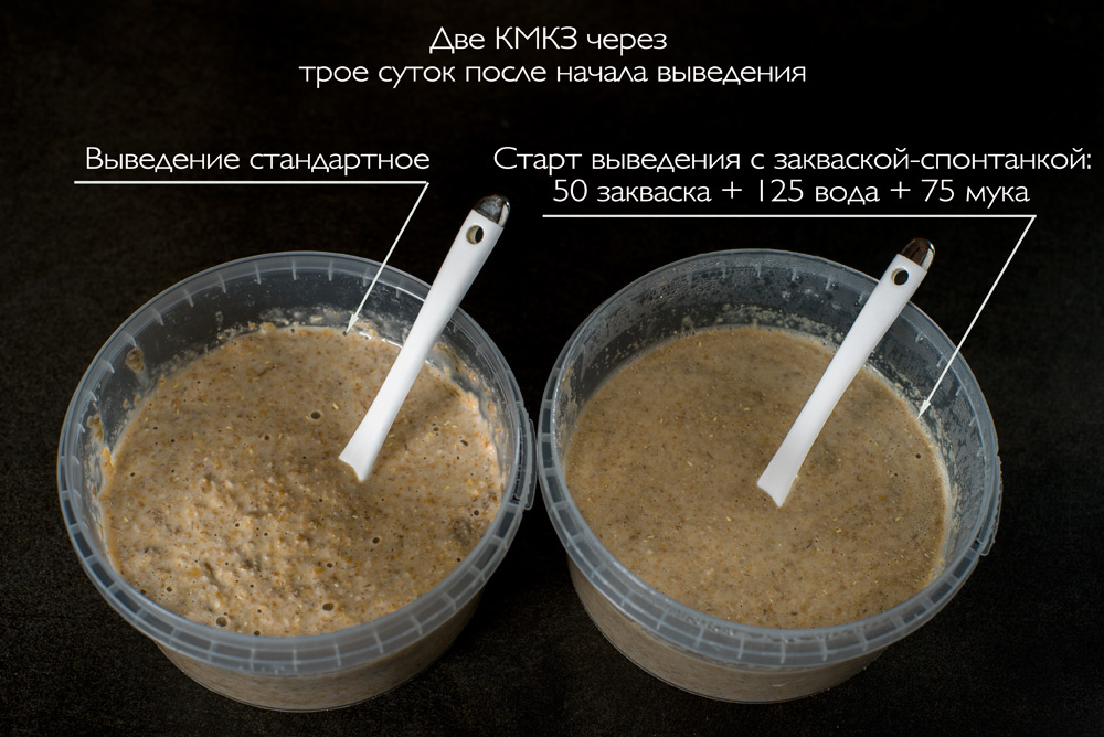 9_две-КМКЗ_DSC04303-2