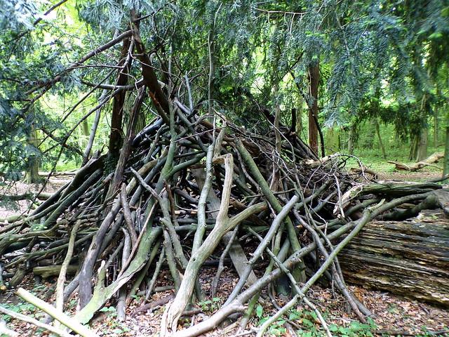Eilenriede: Wild Fort