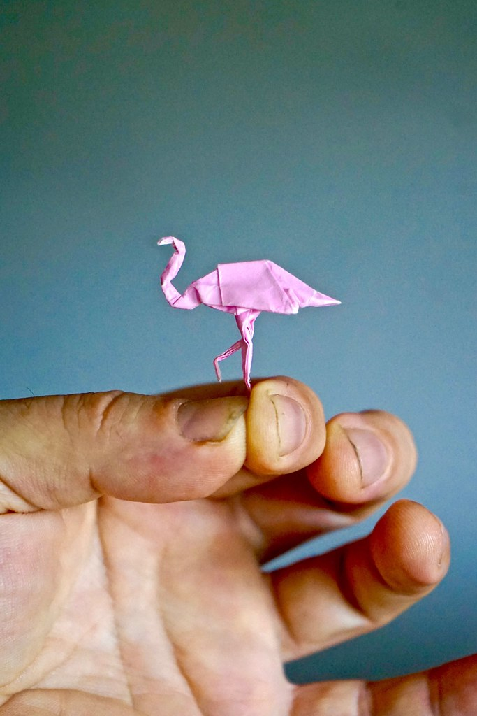 Origami Flamingo Little Flamingo Designed By John Montroll Flickr