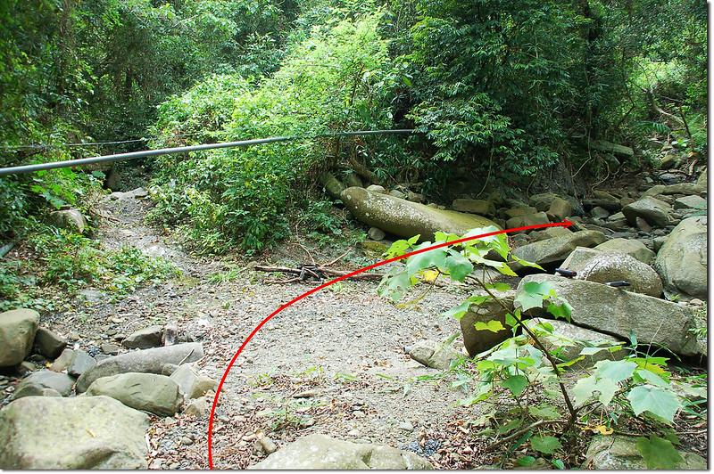 紅土(中港)溪支流分岔 1