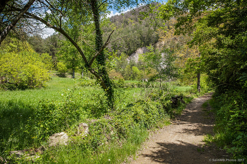 Camino del Molí de Campalans