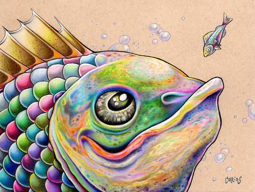 Funky Fish 6
