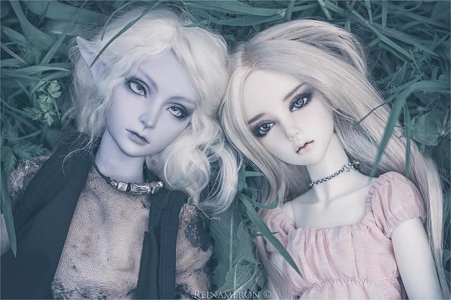 Sirius and Calanthe