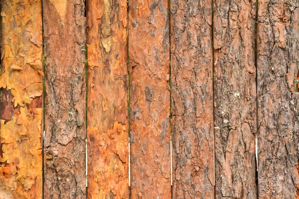 Holz Struktur holzstruktur stock photos fotos le flickr