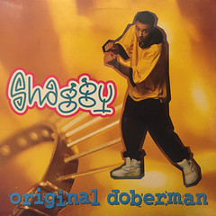 SHAGGY:ORIGINAL DOBERMAN(JACKET A)