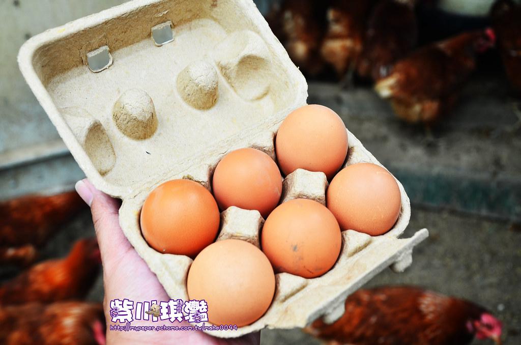 福壽農場商品-000