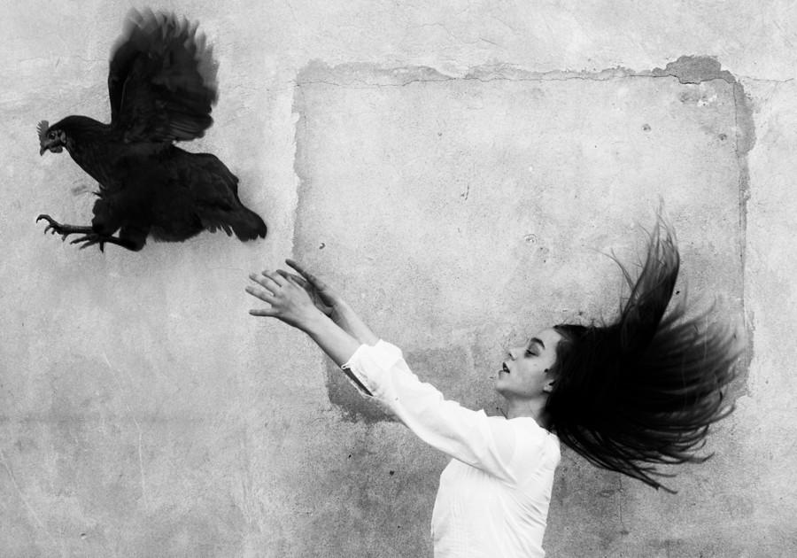 Wings | by szincza