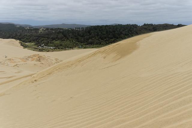 Giant Te Paki Sand Dunes