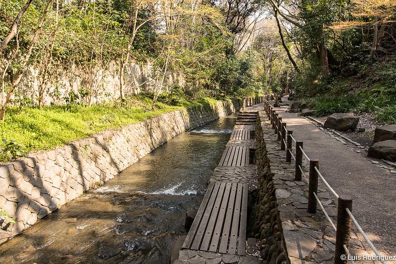 Valle-Todoroki-Tokio-27