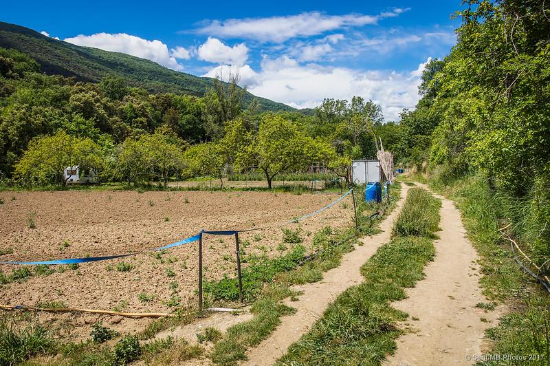 Camino de los huertos en dirección al Gorg de la Plana