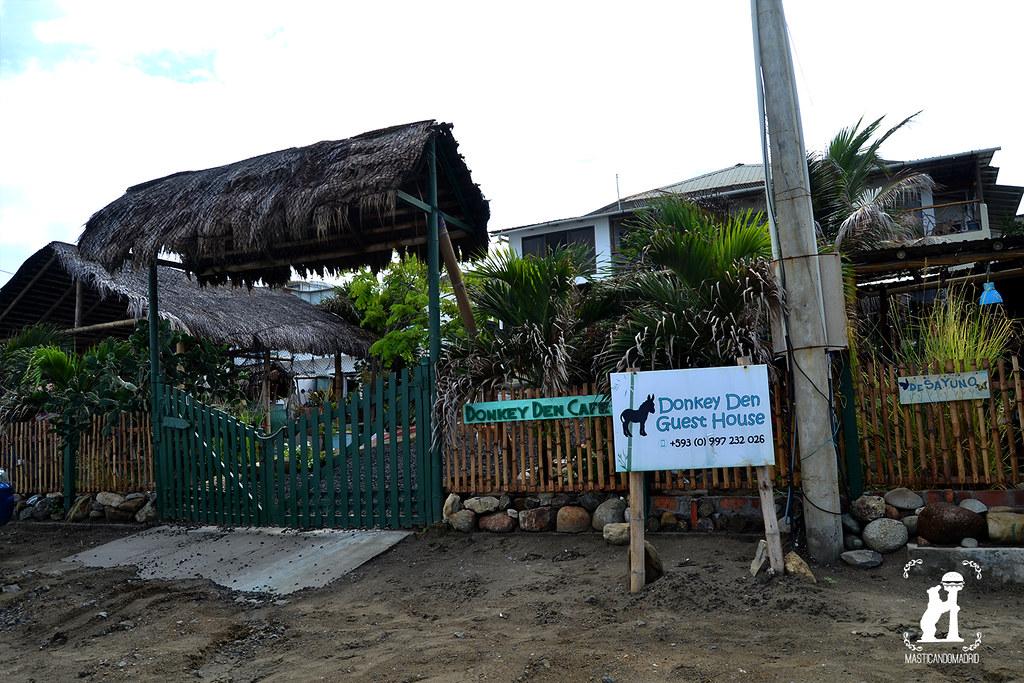 Donkey Den playa