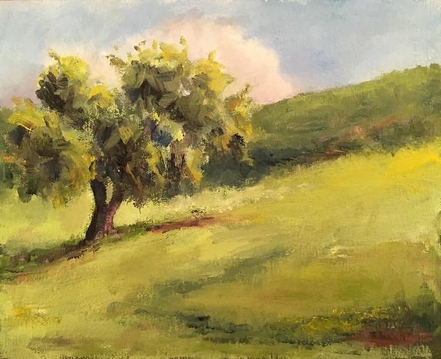 Santa Teresa County Park tree
