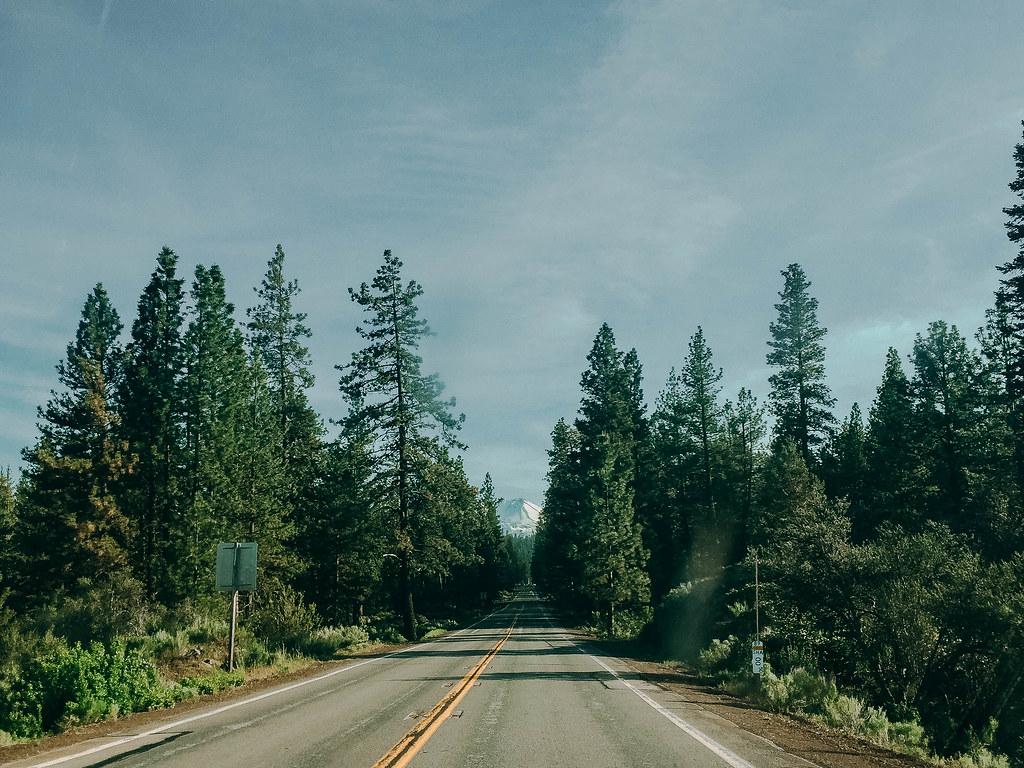 Mount Shasta-4-2