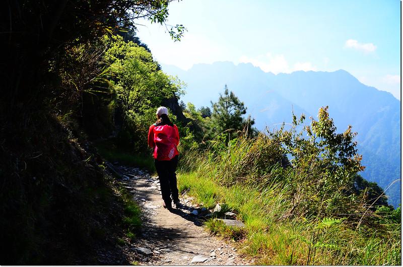 玉山登山步道 2