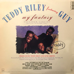 TEDDY RILEY featuring GUY:MY FANTASY(JACKET B)