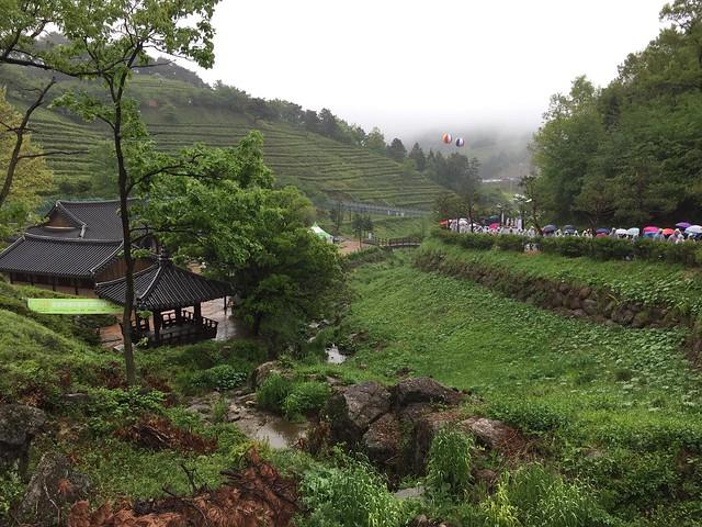 Rainy start in Boseong