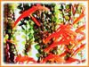 Columnea scandens L. variegata (Goldfish Plant, Flying Goldfish Plant, Columnea)