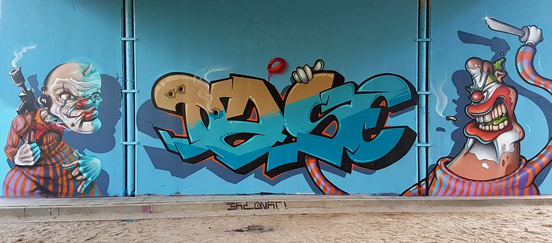 Nash,Dase,Sapo