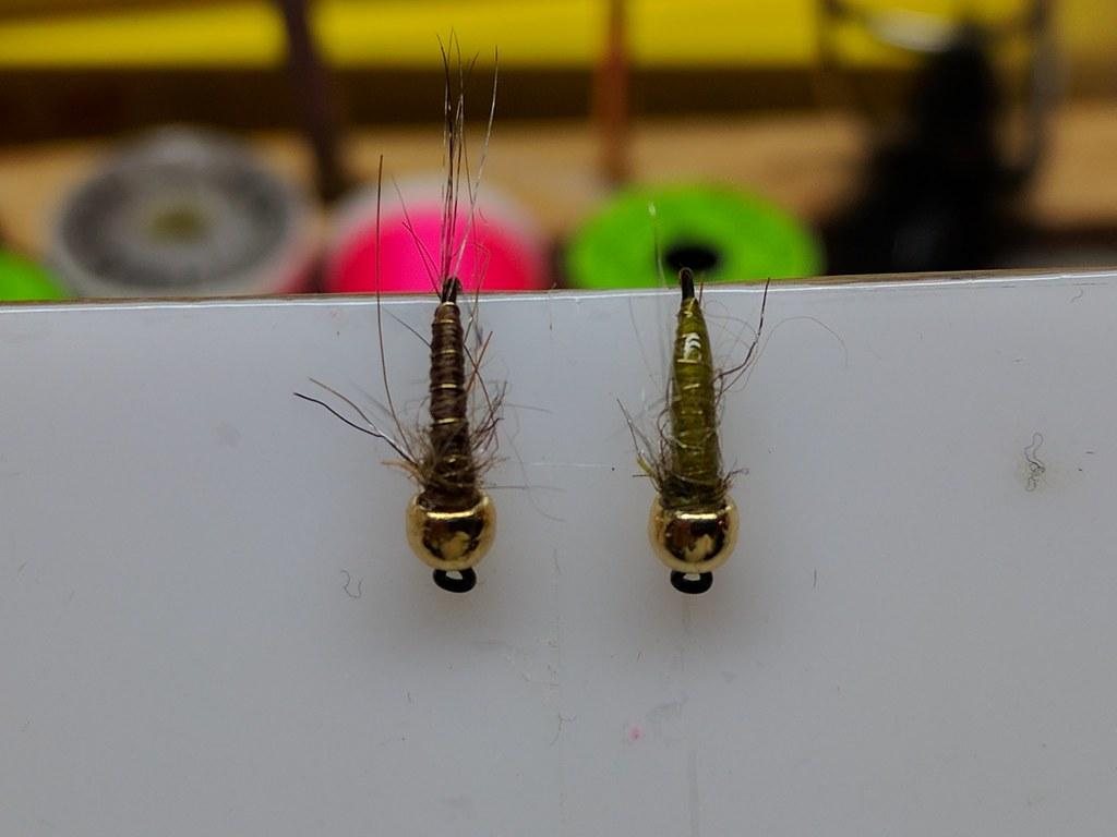 Best ontario trout flies