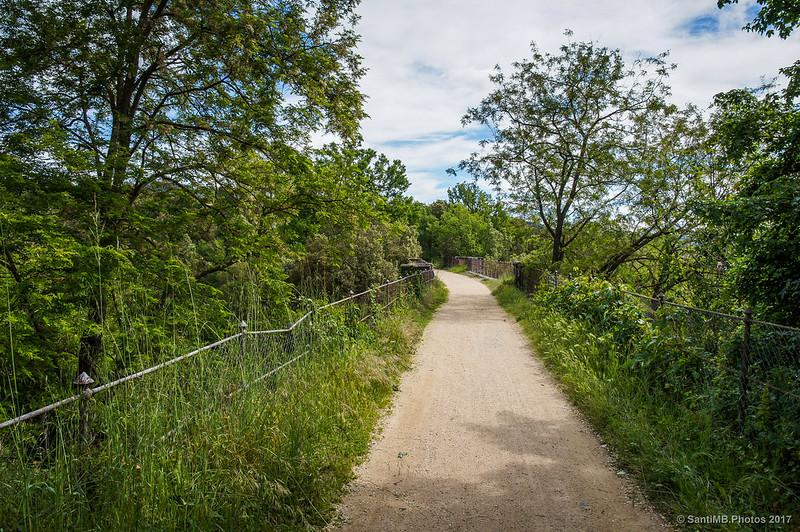 Inicio de la Vía Verde de Les Planes d'Hostoles a Sant Feliu de Pallerols