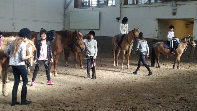 2017 ugsel equitation