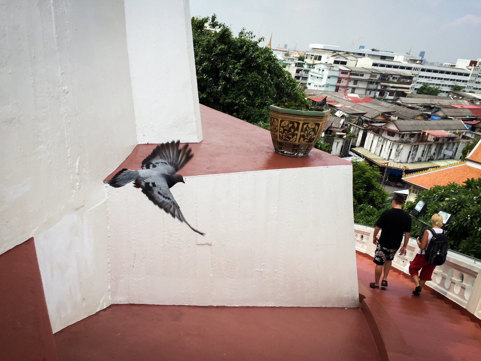 flying  !!   by Audsadang Satsadee