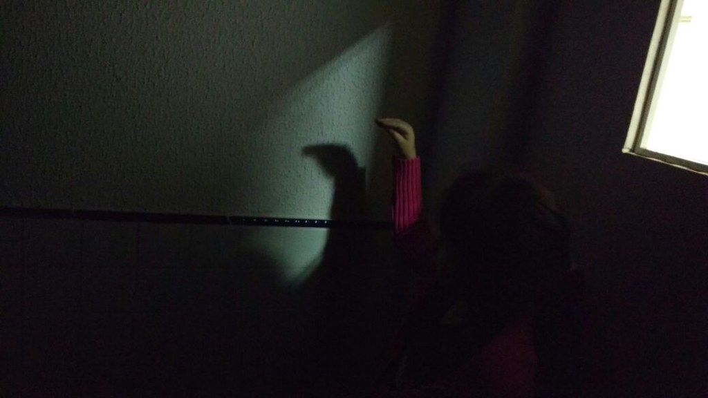 Brincando com sombra