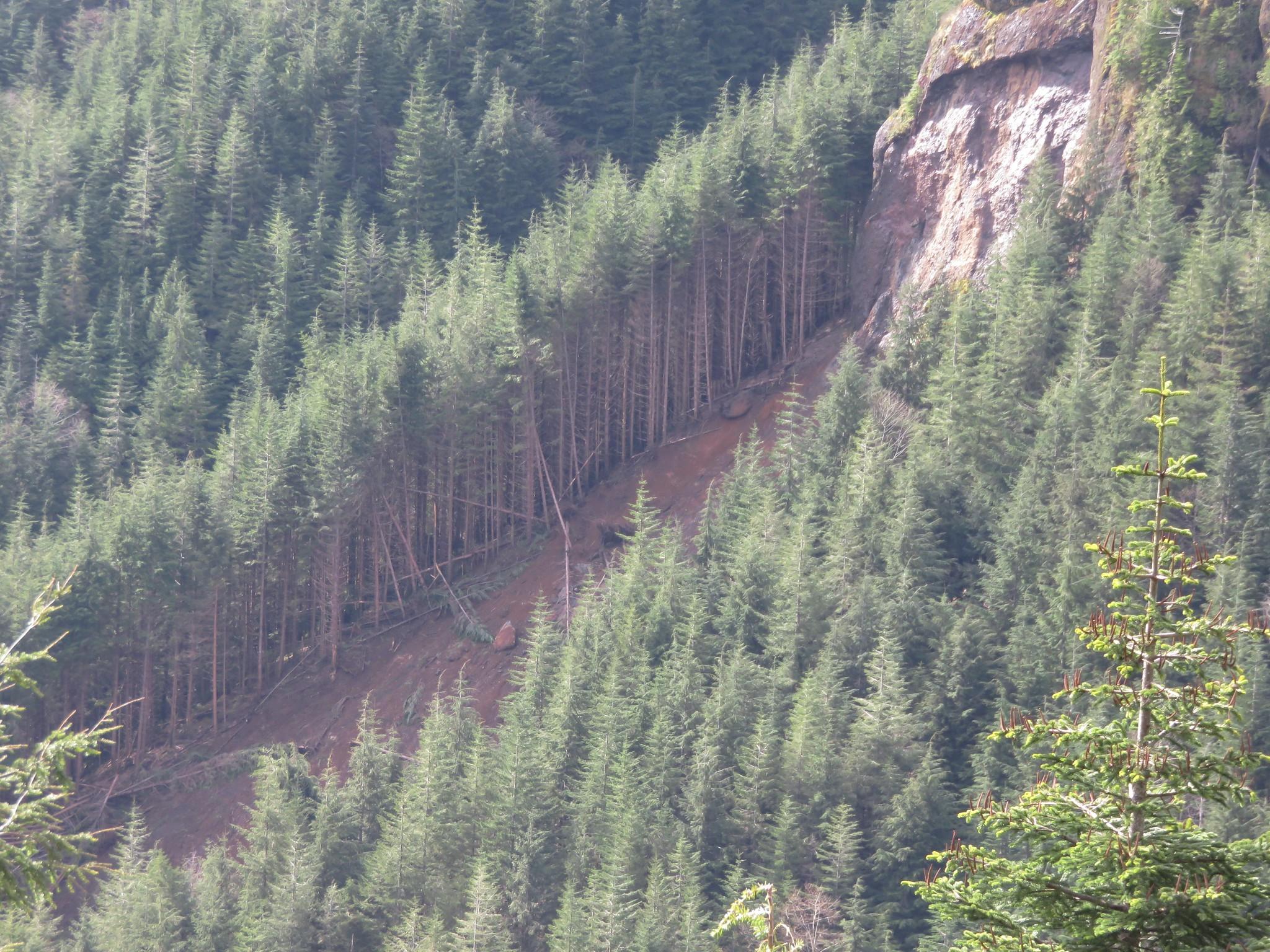 Slide below Little Angora