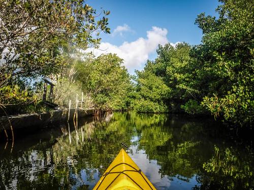 Indian River Paddling-14