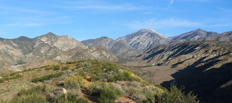 Panorama view north toward San Gorgonio with wildflowers from the PCT at mile 223