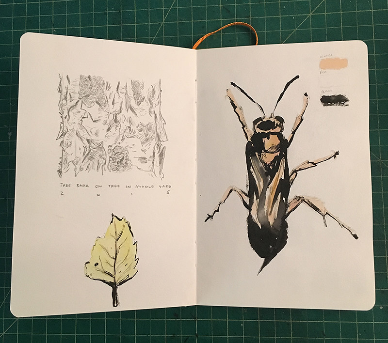 Nature Sketchbook 001