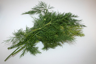 03 - Zutat Dill / Ingredient dill