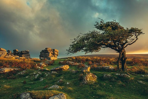 Good luck to all those doing the Ten Tors Challenge on Dartmoor this weekend. 400 teams will be hiking up to 55 miles across the rugged terrain of Dartmoor. Quite a challenge. #Dartmoor #tentors #nature_perfection #devon #tree #skyporn  #stormy #stormclou | by Play of light