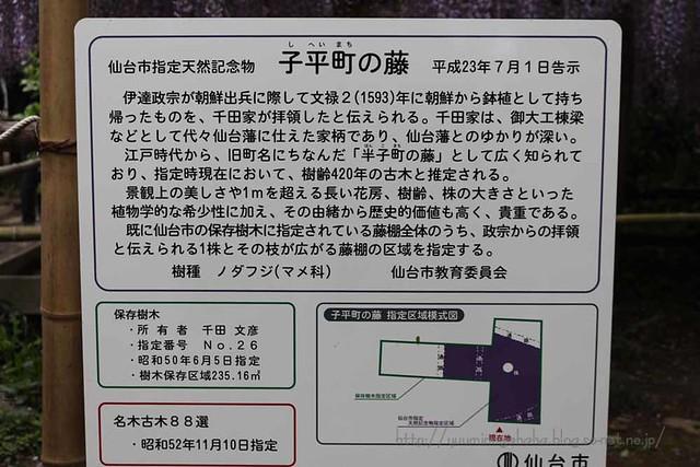 仙台市指定天然記念物