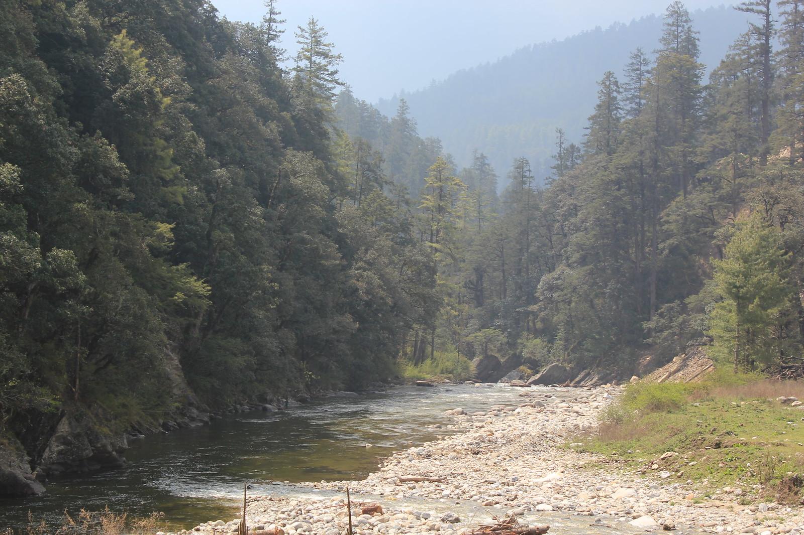 Fishing Bhutan