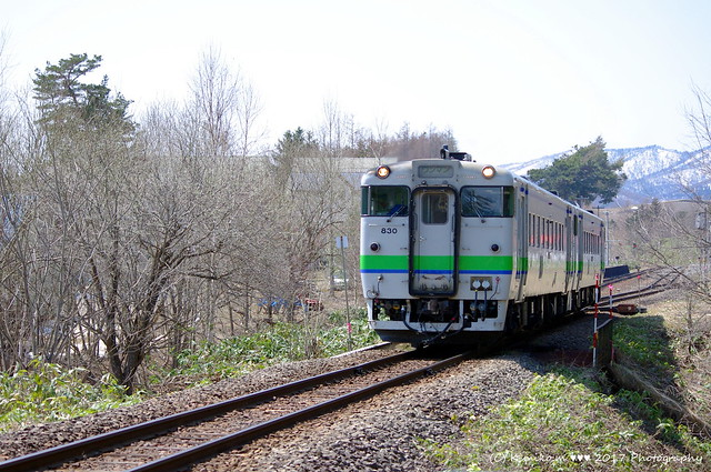 富良野線のキハ40④